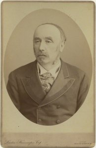 Sir Lewis Morris by London Stereoscopic & Photographic Company